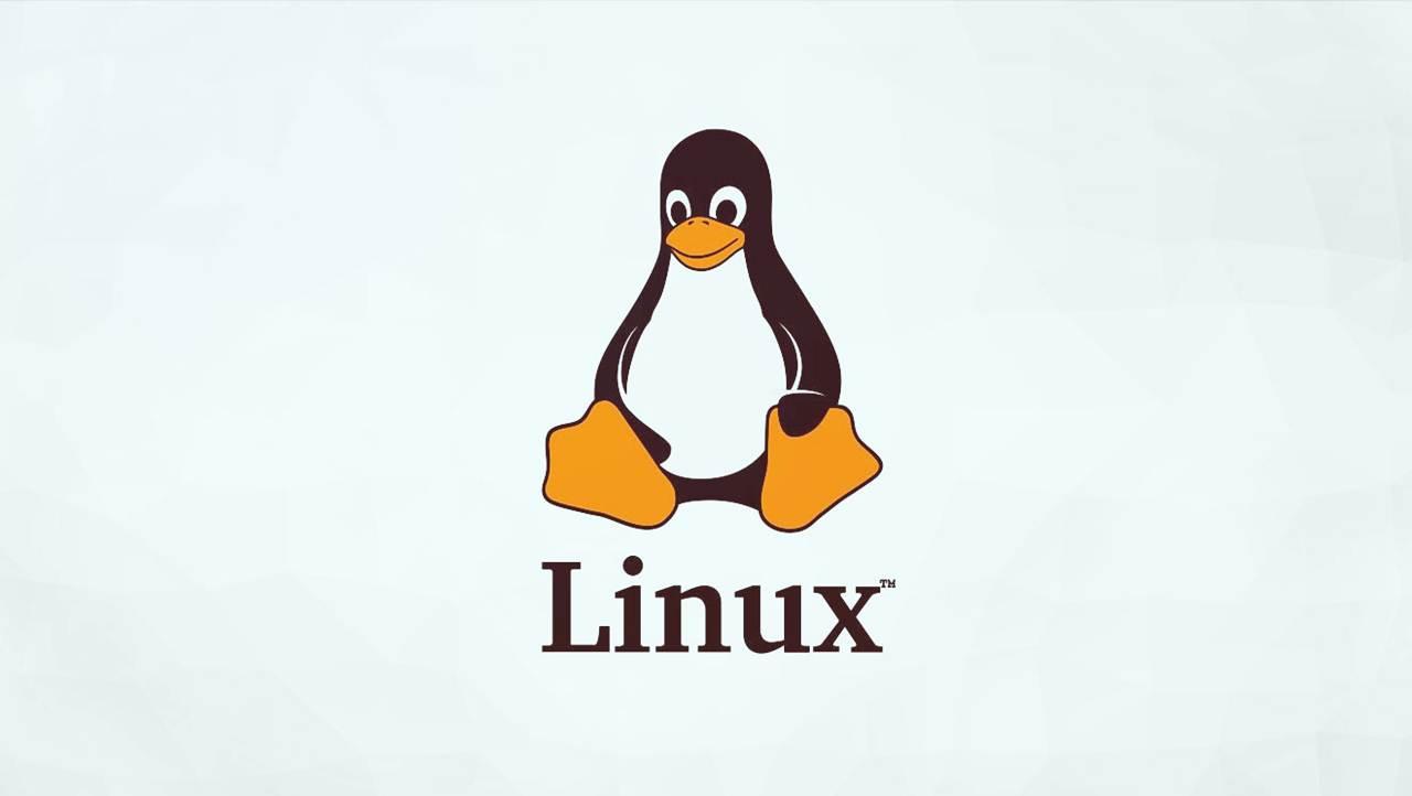 Filezilla para Linux